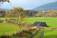 Black plastic wrapped silage, Bleasdale, Lancashire.
