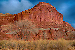 January 2018:  Desert colors are vibrant following a winter storm in Capital Reef National Park, Utah.