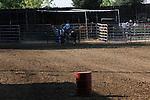 MFHS Barrels Rider 346