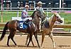Spark Won at Delaware Park on 8/5/13