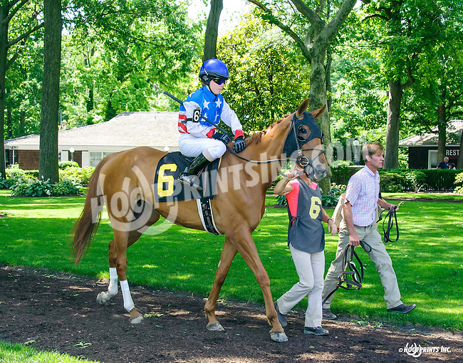 Hang In There Baby in The International Ladies FEGENTRI  race at Delaware Park on 6/13/16