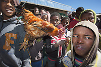 Ethiopia. Southern Nations, Nationalities, and Peoples' Region. Bojeber Village. High altitude: 3'250 metres. Boys and a roster on market day. Casual clothes and the Union Jack on  a sweater. Southern Nations, Nationalities, and Peoples' Region (often abbreviated as SNNPR) is one of the nine ethnic divisions of Ethiopia. 15.11.15 © 2015 Didier Ruef