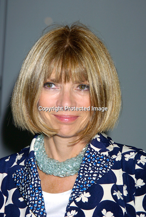 Anna Wintour in Vuitton suit..at the Ann Taylor 50th Anniversary Celebration with Vogue..featuring a silent auction of portraits by Annie Liebowitz to benefit the Susan G. Koman Foundation ..on September 9, 2004 at the Chelsea Art Museum. ..Photo by Robin Platzer, Twin Images..