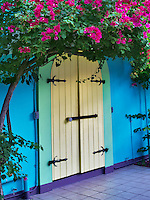Store front doors with Bouganvilla. St. John. Virgin Slands