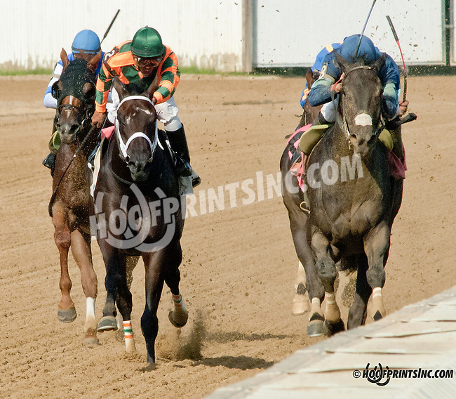 Service for Ten winning The Vincent A. Moscarelli Memorial Stakes at Delaware Park on 8/10/13