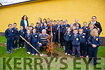 Students of LoughFouder NS Knocknagoshel  plant a tree to mark the Retirement of Michael Herlihy who is retiring as principal after 29 years service