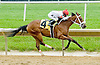 Cape Girl winning at Delaware Park on 5/21/12