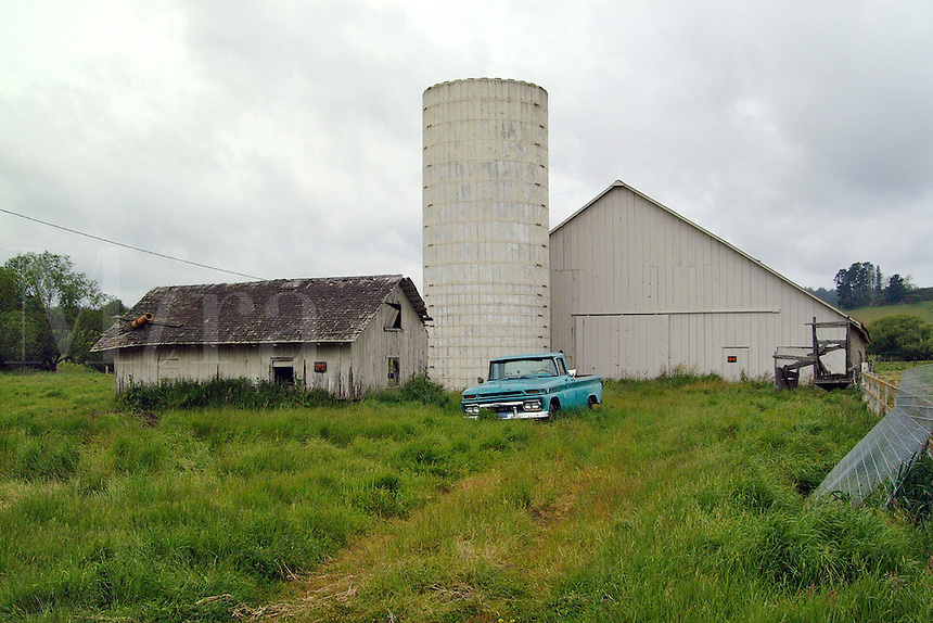 A barn, silo, old ramshakle utility building and a blue pickup truck in Freestone, California