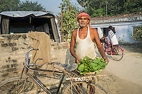 Producer group farmer Geeta Devi's husband arrives to the collection centre to deliver spinach from his wife's farm in Machahi village, Muzaffarpur, Bihar, India on October 27th, 2016. Non-profit organisation Technoserve works with women vegetable farmers in Muzaffarpur, providing technical support in forward linkage, streamlining their business models and linking them directly to an international market through Electronic Trading Platforms. Photograph by Suzanne Lee for Technoserve