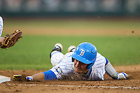 UCLA catcher Shane Zeile (14) dives back to first base during Game 12 of the 2013 Men's College World Series against the North Carolina Tar Heels on June 21, 2013 at TD Ameritrade Park in Omaha, Nebraska. The Bruins defeated the Tar Heels 4-1, to reach the CWS Final and eliminate North Carolina from the tournament. (Andrew Woolley/Four Seam Images)