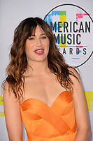 Kathryn Hahn at the 2017 American Music Awards at the Microsoft Theatre LA Live, Los Angeles, USA 19 Nov. 2017<br /> Picture: Paul Smith/Featureflash/SilverHub 0208 004 5359 sales@silverhubmedia.com