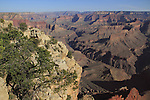 Morning at Pima Point on the South Rim looking northwest to the North Rim, Grand Canyon National Park, northern Arizona, USA .  John offers private photo tours in Grand Canyon National Park and throughout Arizona, Utah and Colorado. Year-round.
