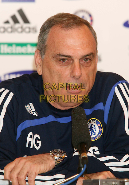 AVRAM GRANT.Today?s press conference to preview Chelsea FC v Derby County at Chelsea FC?s Training Ground, Stoke D?Abernon England, Tuesday 11th March 2008. .portrait headshot manager coach football soccer team club.CAP/DS.?Dudley Smith/Capital Pictures