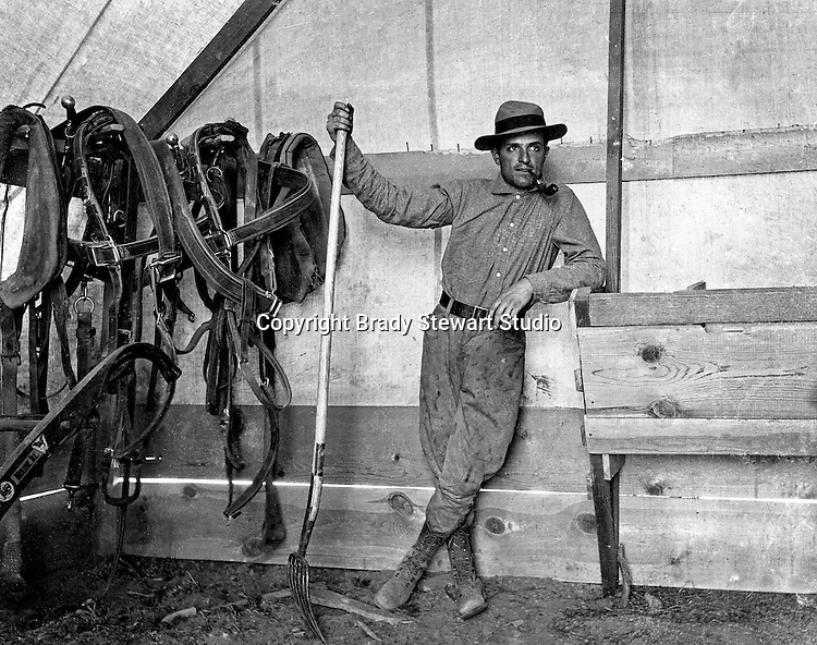 Products: Pitch Folk and Horse Harnesses<br />