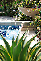 Pool Waterfall fountain and Landscape
