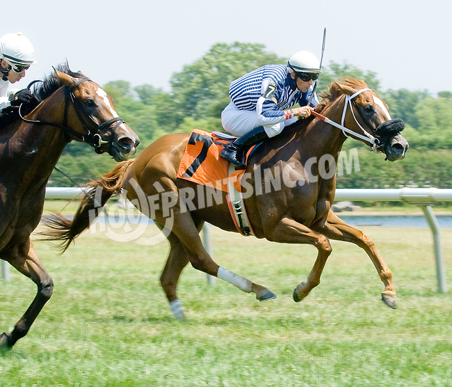 Heart Union winning at Delaware Park on 7/4/12