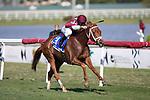 HALLANDALE BEACH, FL - JANUARY 25: Atomic Blonde, #3, ridden by jockey Javier Castellano, wins the South Beach Stakes on January 25, 2020 at Gulfstream Park in Hallandale Beach, Florida. Kaz Ishida/Eclipse Sportswire/CSM