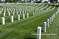 65095-01701 Flags on Memorial Day at Jefferson Barracks National Cemetery, St Louis, MO