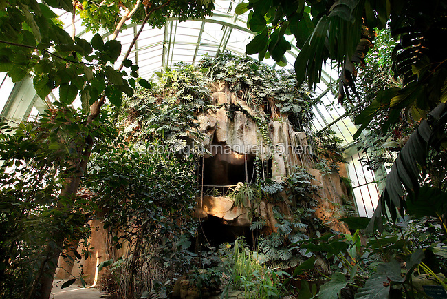 Tropical Rainforest Glasshouse (formerly Le Jardin d'Hiver or Winter Gardens), 1936, RenÈ Berger, Jardin des Plantes, Museum National d'Histoire Naturelle, Paris, France. Low angle view of the cave, covered by luxuriant Epiphytes plants, seen in the morning light against the glass and metal roof structure of the Art Deco style glasshouse.