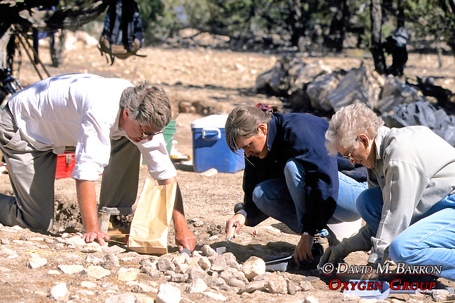 Alan Sullivan, Alison Barlett & Alpha Evans Excavating Site