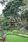TANZANIA, a garden in Gibbs Farm