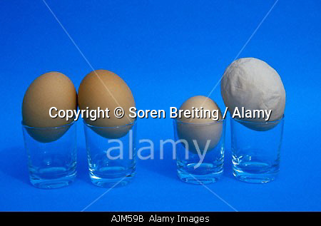 AJM59B Hen s eggs Symbolic Forming pairs Couples can be very similar or very different
