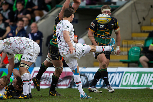 29.03.2014.  Northampton, England.  Ben YOUNGS of Leicester Tigers box kicks during the Aviva Premiership match between Northampton Saints and Leicester Tigers at Franklin's Gardens.  Final score: Northampton Saints 16-22 Leicester Tigers.