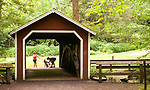 "SOUTHBURY, CT-081217JS04-- Izy Ortiz and her daughter Janell Luevano, both of Naugatuck, took their dogs ""Bella"" and ""Jake"" for a walk at around the covered bridge at Southford Falls State Park in Southbury on Saturday Jim Shannon Republican-American"