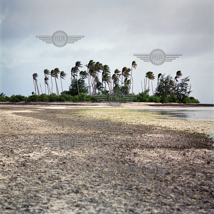 A once inhabited islet Aberairang. Due to rising sea levels the islet is flooded more and more killing plant life and vegetation.