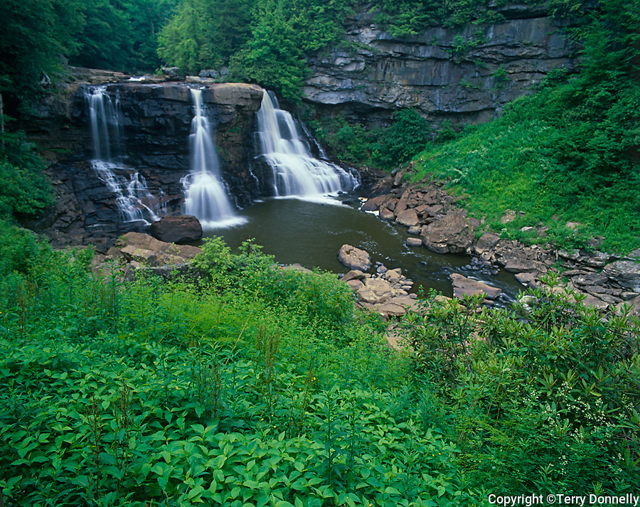 Blackwater Falls State Park, WV<br /> Blackwater Falls on the Blackwater River in summer near the town of Davis, West Virginia