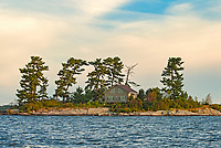 COttage and pine trees on Island in Lake of the Woods<br />
