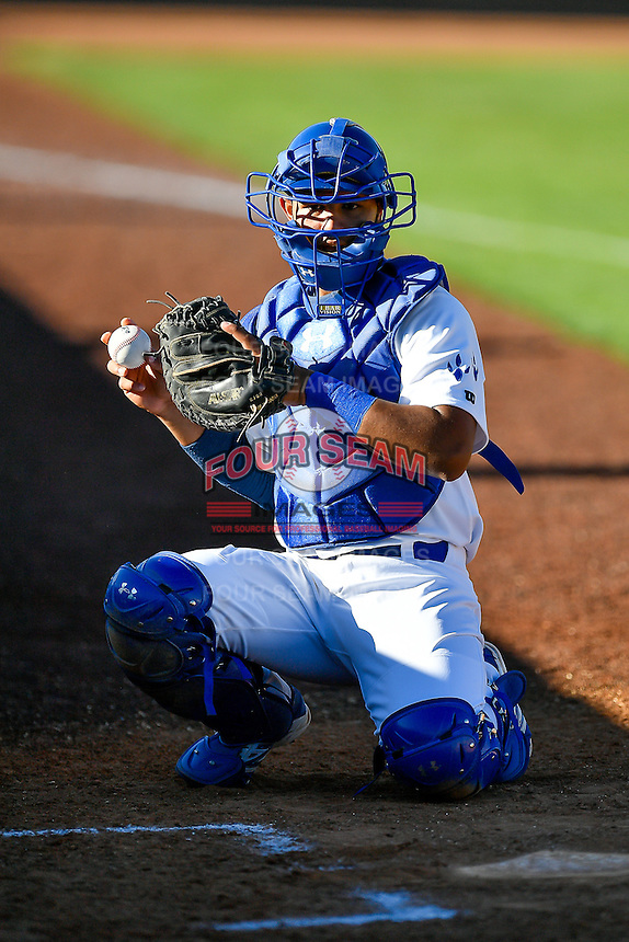 Keibert Ruiz (31) of the Ogden Raptors before the game against the Missoula Osprey in Pioneer League action at Lindquist Field on July 13, 2016 in Ogden, Utah. Ogden defeated Missoula 8-2. (Stephen Smith/Four Seam Images)