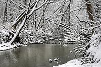 Winter at Perch Creek Nature Habitat