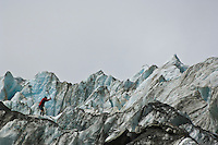 guide cutting steps on Franz Josef glacier, New Zeland