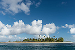 Toau Atoll, Tuamotu Archipelago, French Polynesia; a palm tree covered island at the edge of Fakatahuna Pass on Toau Atoll