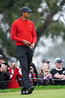 Tiger Woods (USA) In action during the final round of the Farmers Insurance Open, Torrey Pines, La Jolla, San Diego, USA. 25/01/2020<br /> Picture: Golffile | Phil INGLIS<br /> <br /> <br /> All photo usage must carry mandatory copyright credit (© Golffile | Phil Inglis)