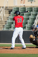Ethan Gross (18) of the Kannapolis Intimidators at bat against the Hickory Crawdads at CMC-Northeast Stadium on May 21, 2015 in Kannapolis, North Carolina.  The Intimidators defeated the Crawdads 2-0 in game one of a double-header.  (Brian Westerholt/Four Seam Images)
