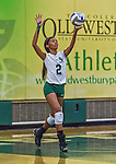 1 November 2015: SUNY College at Old Werstbury Panther Outside and Middle Hitter Rayn Brown, a Senior from Mount Vernon, NY, in action against the Yeshiva University Maccabees at SUNY Old Westbury in Old Westbury, NY. The Panthers edged out the Maccabees 3-2 in NCAA women's volleyball, Skyline Conference play. Mandatory Credit: Ed Wolfstein Photo *** RAW (NEF) Image File Available ***