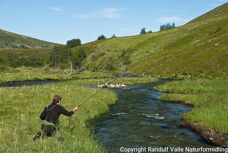 Mann kaster med flue i liten elv. ---- Man fly fishing in small river.