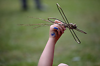 Pictured: A boy plays with an insect shaped willow creation Saturday 13 August 2016<br />