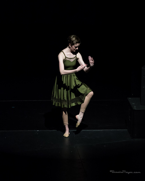"""Saturday Matinee Performance of """"Shine On"""", the 2017 Annual Recital by Bravo Academy."""
