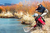 A flyfisher fights a Yellowstone cutthroat trout on a western Montana stream.