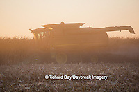 63801-06714 John Deere combine harvesting corn at sunset, Marion Co., IL