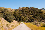 Perimeter Road on Angel Island, near San Francisco, California, USA.  Photo copyright Lee Foster.  Photo # california108929