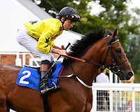 Beringer ridden by Finley Marsh goes down to the start during Ladies Evening Racing at Salisbury Racecourse on 15th July 2017