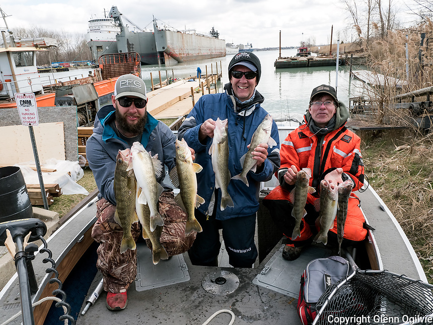A London area trio of fisherman landed a good size catch of walleye during a weekly fishing excursion to Sarnia. Displaying their catch of walleye are from left; Adam Smith, Jeffery Howard and Bob Smith. The fishermen said they caught most of the fish near the Black River in five hours. They also emphasized the need for an American fishing licence while fishing in American waters. The fishermen plan to be back for the 41st Annual 2017 Salmon Derby starts on Friday, April 28th and ends Sunday, May 7th. Launching boats is being done at Bridgeview Marina this year. The dock is being upgraded, seen in the background, and surrounding area cleaned-up.