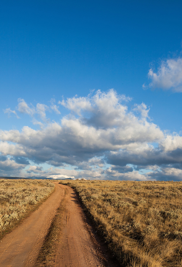 A dirt road curves off into the distance under a blue sky with puffy clouds in Western Montana.