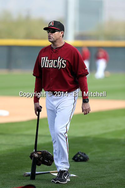 Hitting coach Turner Ward of the Arizona Diamondbacks participates in the first day of spring training workouts at Salt River Fields on February 7, 2014 in Scottsdale, Arizona (Bill Mitchell)