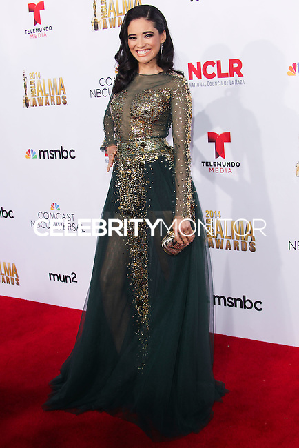 PASADENA, CA, USA - OCTOBER 10: Edy Ganem arrives at the 2014 NCLR ALMA Awards held at the Pasadena Civic Auditorium on October 10, 2014 in Pasadena, California, United States. (Photo by Celebrity Monitor)