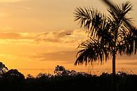 SÃO PAULO,SP, 05.07.2016 - FUTEBOL-CORINTHIANS - Por-do-sol visto a partir do CT Joaquim Grava, no Parque Ecológico do Tietê, na zona leste da capital paulista, nesta terça-feira. (Foto: Vanessa Carvalho/Brazil Photo Press)